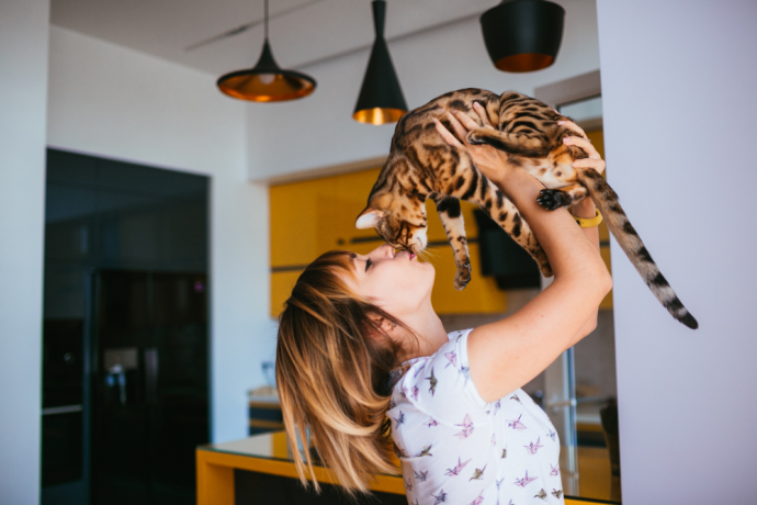 Adopting an Older Cat