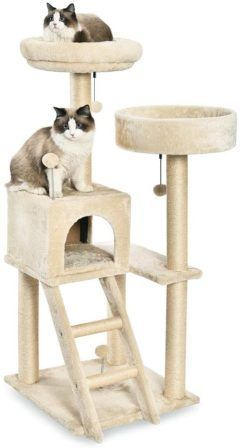 Best Cat Tree For Large Cats 15 Cat Towers For Big Cats Reviews