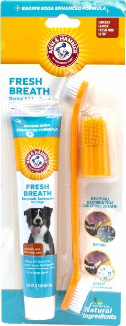 arm & hammer dental fresh breath enzymatic dog toothpaste & brush kit