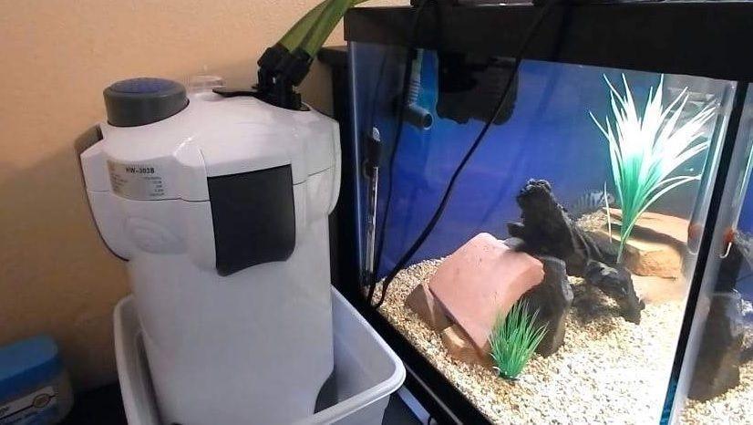 best aquarium canister filters