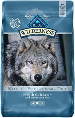 blue buffalo wilderness high protein grain free natural puppy dry dog food