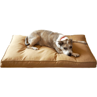 bully bed chew resistant dog bed