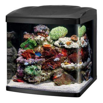 coralife led biocube aquarium replacement canopy