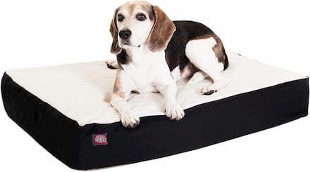 double orthopedic dog bed