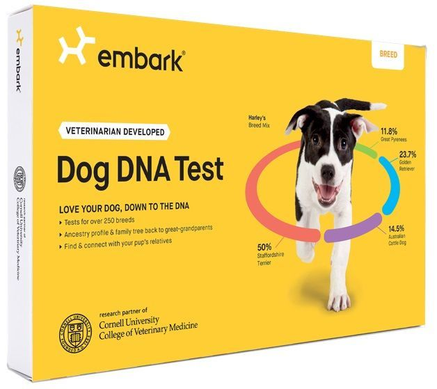 embark breed identification kit