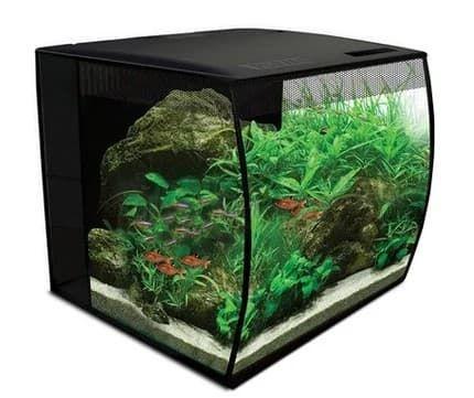 fluval flex 34l aquarium kit