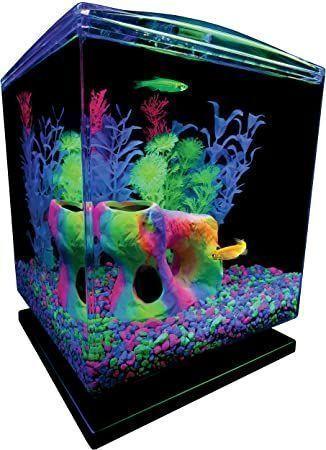 glofish-aquarium-kit