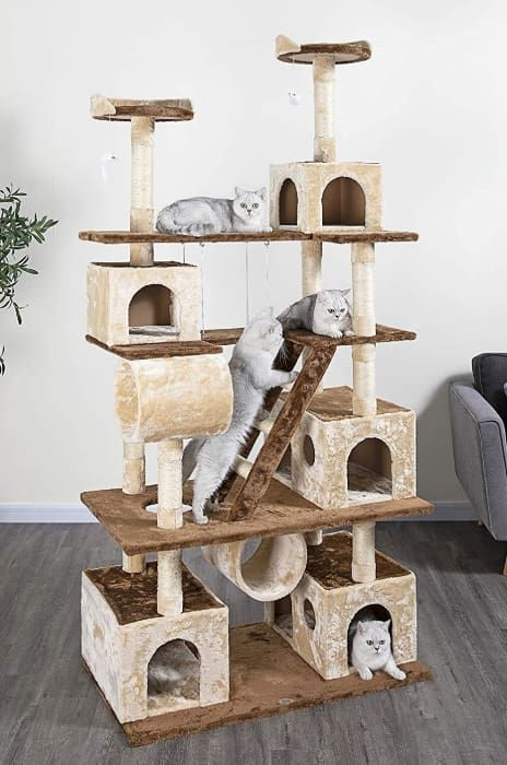 go pet club climber with ladder and swing