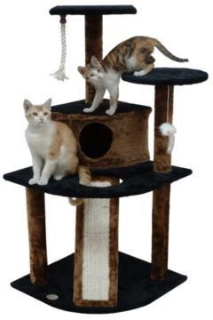 go pet club kitten tree