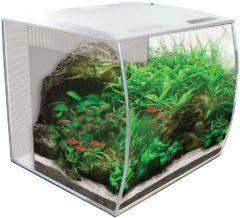 hagen hg fluval alex aquarium