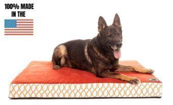 heavy duty solid memory foam dog bed