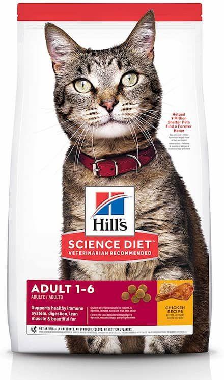 hills science diet dry cat food