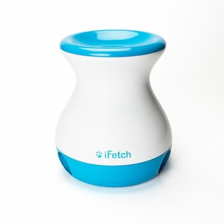 ifetch frenzy interactive brain game uses tennis balls