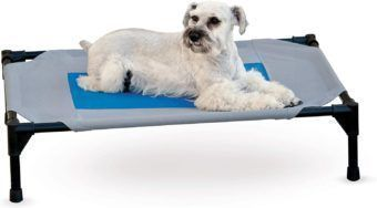 k and h cooling pet cot