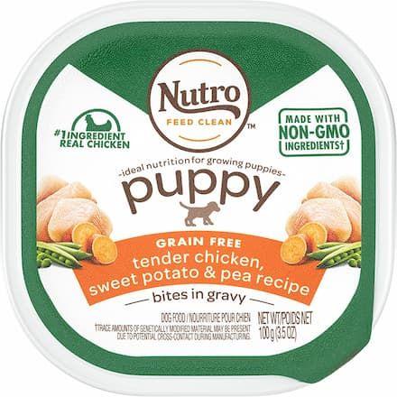 nutro cuts in gravy grain free wet dog food