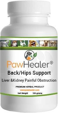 pawhealer back-hip joint support