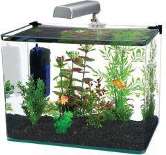 penn plax aquarium kit