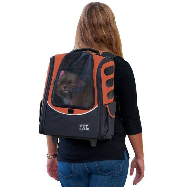 pet gear i-go2 escort dog cat carrier backpack