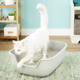 petfusion betterbox non-stick cat litter box