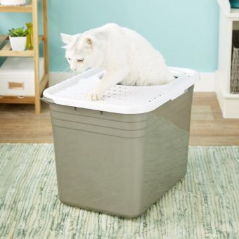 petmate top entry litter pan for cats