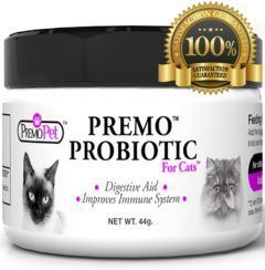 premo probiotic for cats