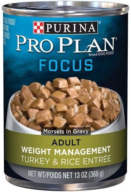 pro plan focus adult weight management canned dog food