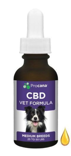 procana medium breed dog cbd tincture