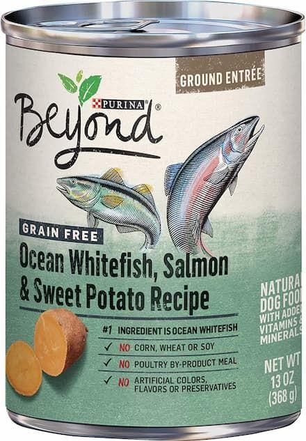 purina beyond ocean whitefish salmon