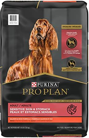 purina pro plan adult sensitive skin and stomach salmon and rice formula dry dog food