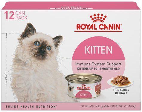royal canin kitten health nutrition thin slices in gravy