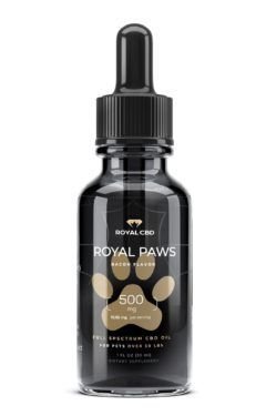 royal cbd full spectrum pet oil
