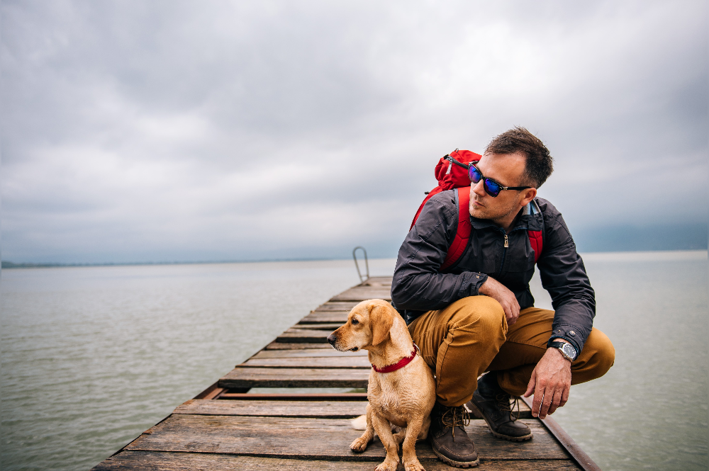 sea travel with your dog