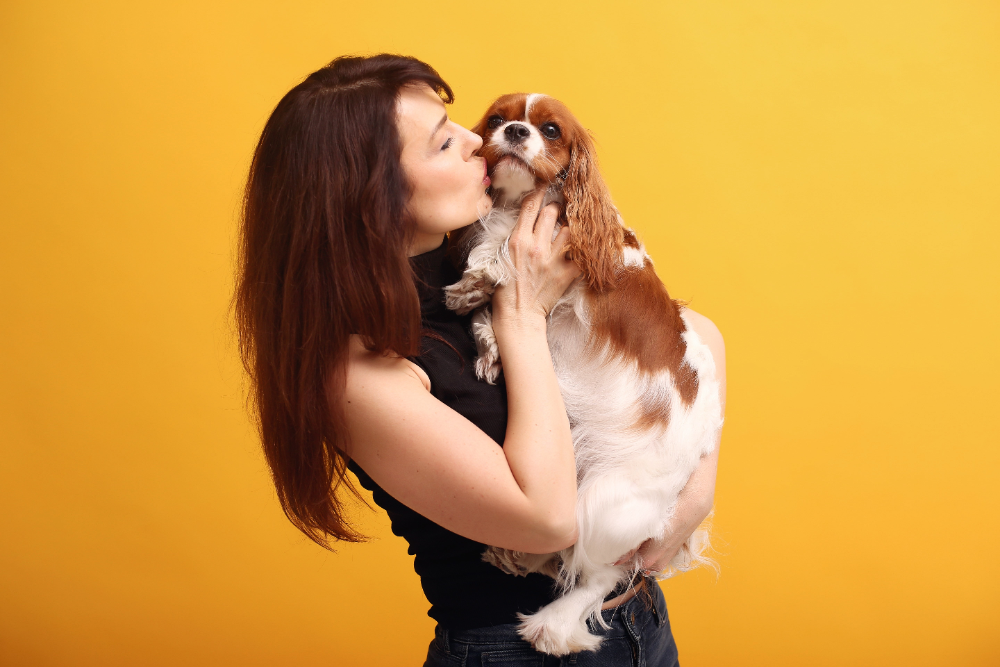 spaying your female dog