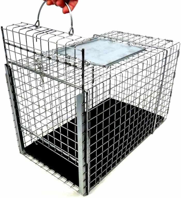 tomahawk live trap tnr series transfer cage