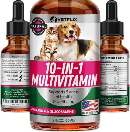 vetflix pet vitamins 10 in 1 made in usa glucosamine for dogs and cats
