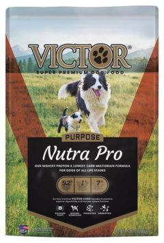victor select nutra pro active dog and puppy formula dry dog food