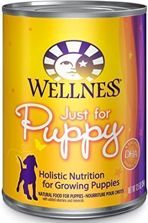 wellness complete health just for puppy