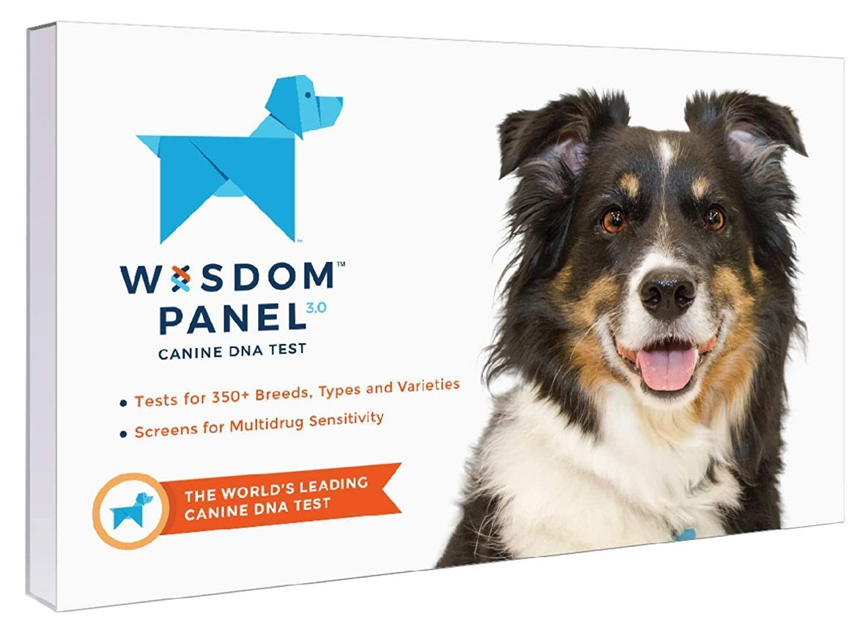wisdom panel dog dna test kit