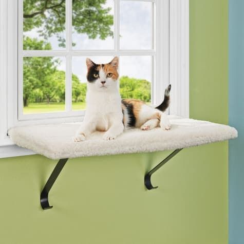 you and me memory foam window cat perch
